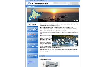 imagePortfolioToppanel_jfErimo