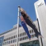 札幌駅の鯉のぼり